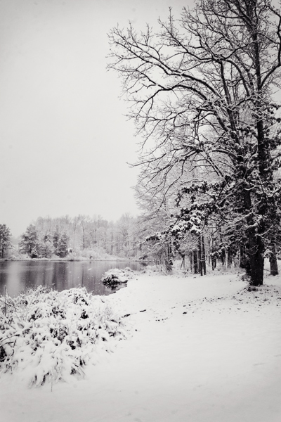 winter-pond